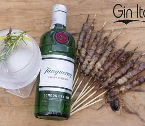 gin Italy ad Atri